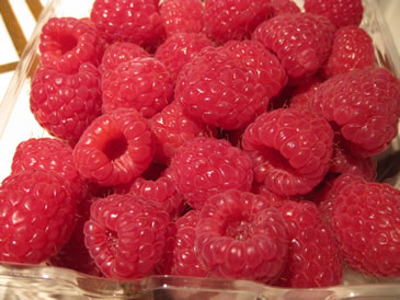 raspberry for berry pie recipe