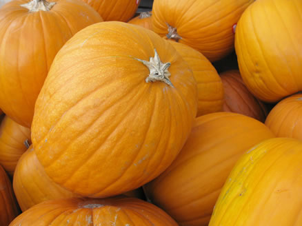 pumpkins in store