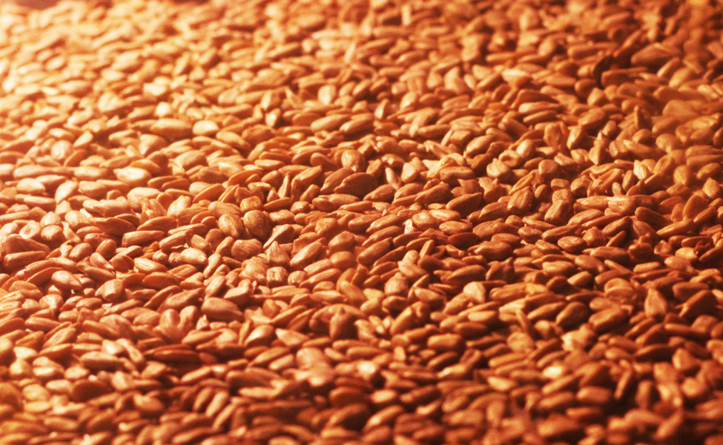 roasting sunflower seeds